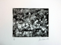 04. Made in America. Copper etch, sans aquatint 10x12cm, 2012.