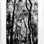 N.t. Etch 10cm x 15cm. 2012